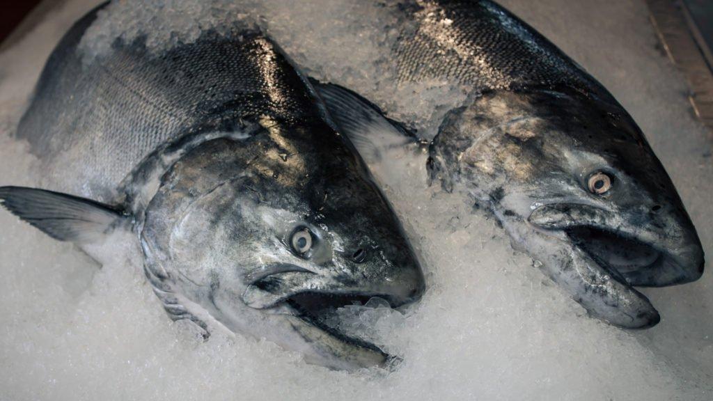 Hvordan tilberede frossen fisk